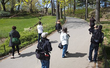 2012.04.09PhotoSafariBug051